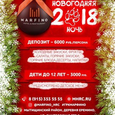 Новогодняя ночь 2018!!!