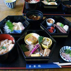 Японская кухня – курица терияки с лапшой