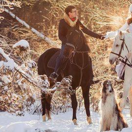 Сказочная свадьба зимой